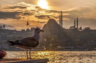 istanbul-nature